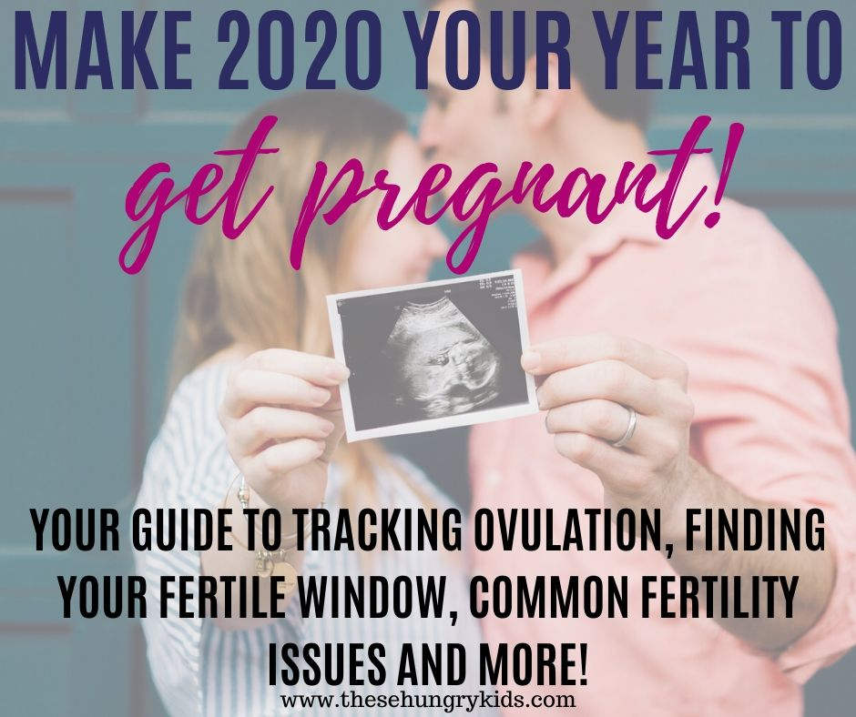 Get pregnant fast in 2020! Learn how to track your ovulation, find your fertile window, and increase your fertility with these awesome tips. Trying to conceive doesn't have to be stressful -- check out this guide to getting pregnant!